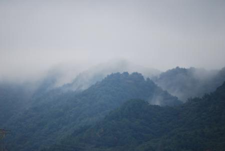 3509霧の中