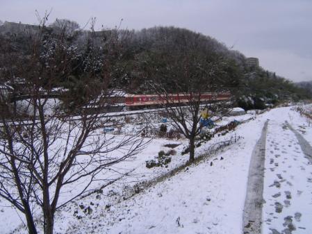 3273雪中列車