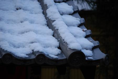 3585屋根の雪