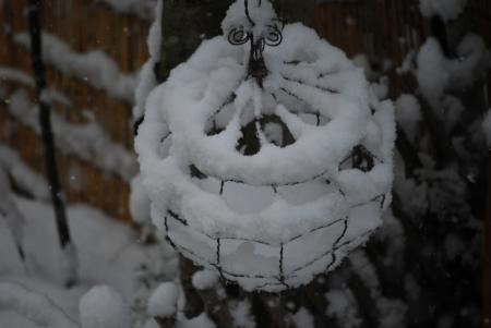 3776雪籠