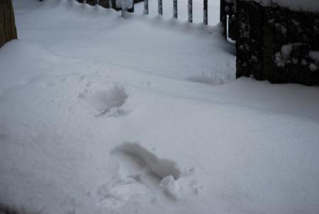 3785雪跡