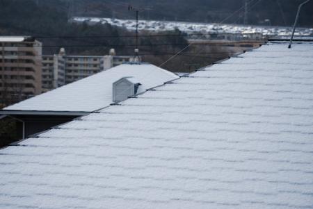 3968雪の朝