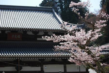 4294温泉寺