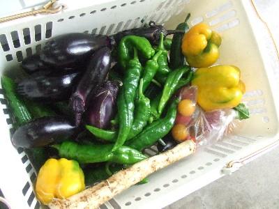 2009.06.18野菜