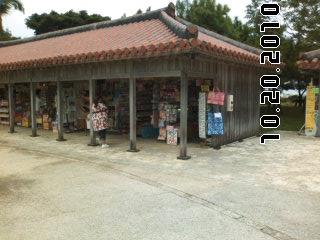 PA0_0047_20101115050544.jpg