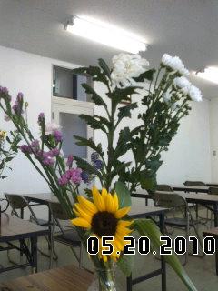 PA0_0052_20100619055817.jpg
