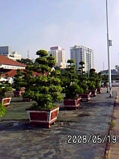 PA0_0127.jpg