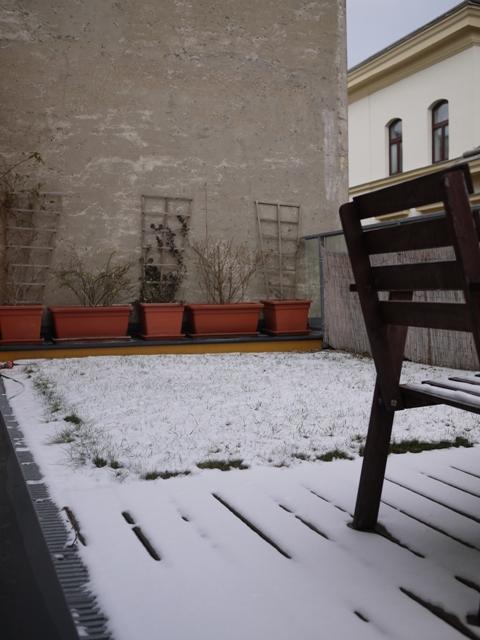 雪が降りました。