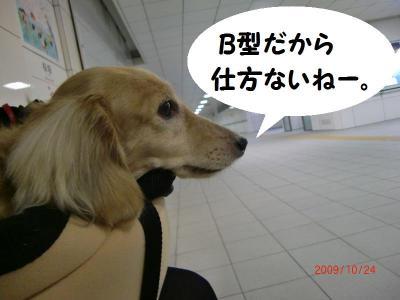 2009.10.24②