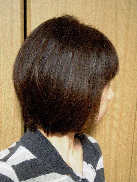 20100110-1.jpg