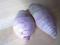 中が紫色の大根