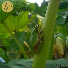 hiragana_ka2.jpg