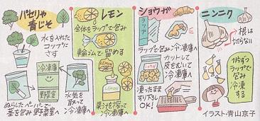 香味野菜の保存方法