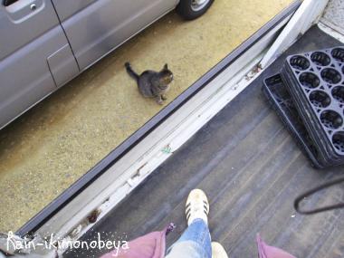 軽トラックの荷台の上だよぉ~ん (^ ^V