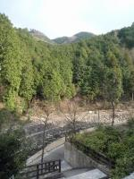 牛滝温泉【いよやかの郷】