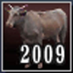 2009年元旦