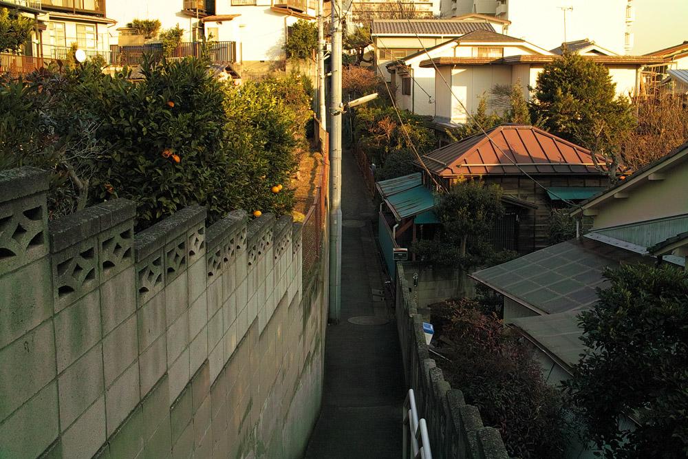 itabashi-014.jpg