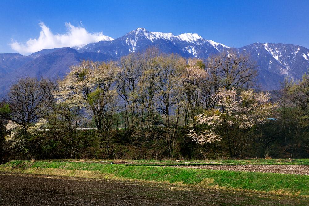 ojiragawa03.jpg