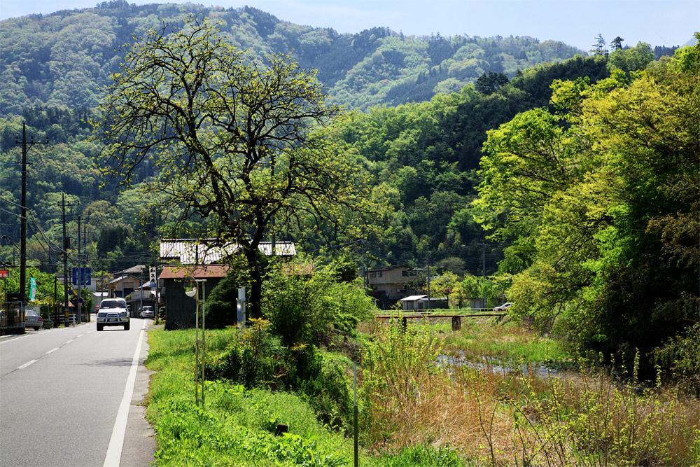ojiragawa04.jpg