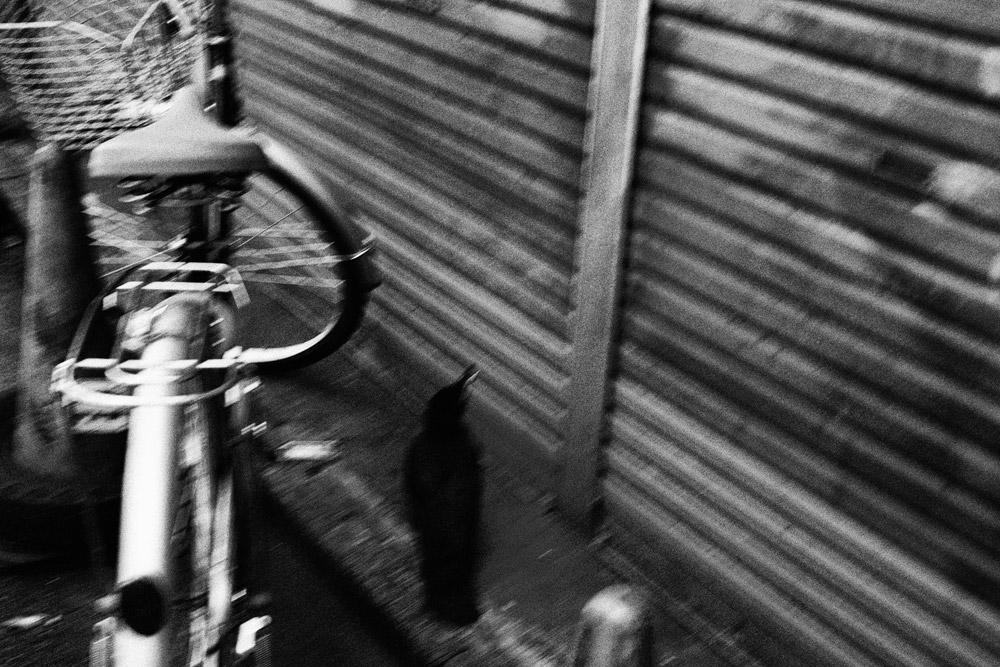 shibuya5-06.jpg