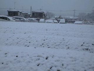 100218雪景色1
