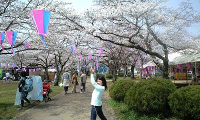 100406桜祭実織1
