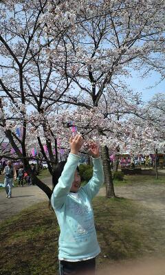 100406桜祭実織2