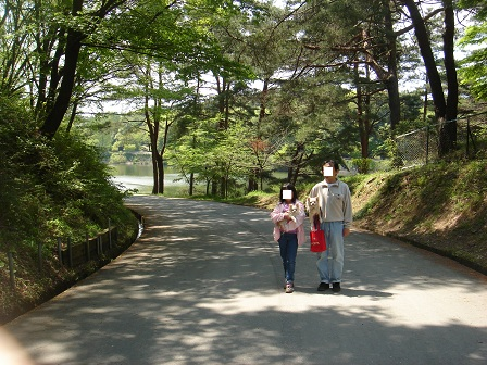 DSC02564宮沢湖道の途中○