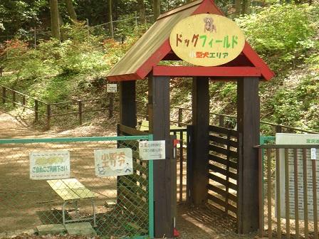 DSC02566宮沢湖ドッグラン入り口○