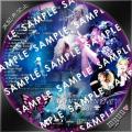 浜崎あゆみ COUNTDOWN-LIVE-2010-2011 BRサンプル