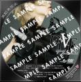 浜崎あゆみ FIVE-A-DVDサンプル