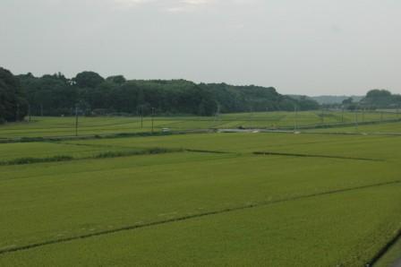 2010-814b.jpg