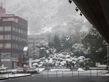 2010-1-14-2.jpg