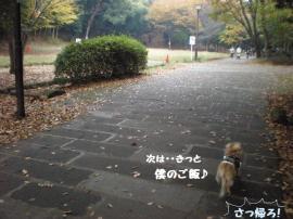 せせらぎ公園ー1