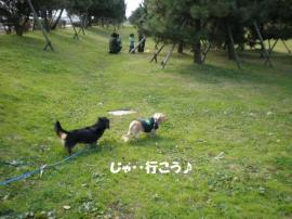 20091130-16.jpg
