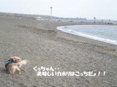 20091130-1.jpg