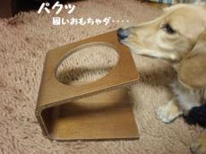 フード台①