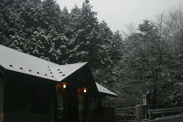 雪景色と店内の花 006