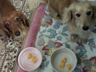 ナナとカンナとマンゴー