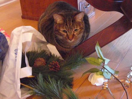 クリスマスの準備1