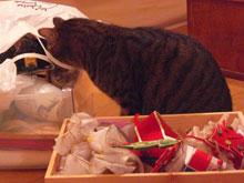 クリスマスの準備8