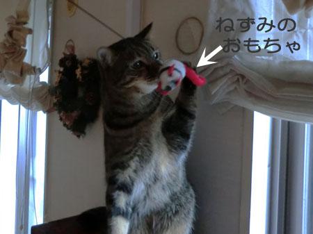 ネズミのおもちゃ1