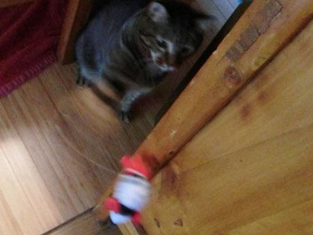 ネズミのおもちゃ7