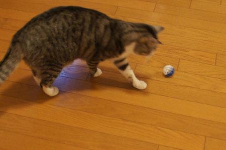 ナナとおもちゃのボール3