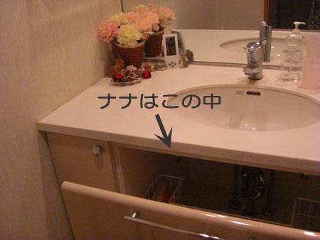洗面所で1R