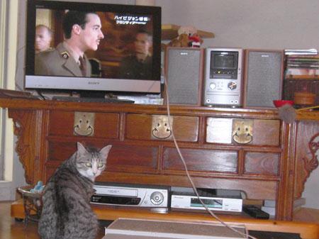 ナナとテレビ5