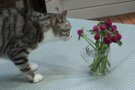 テーブルにお花4
