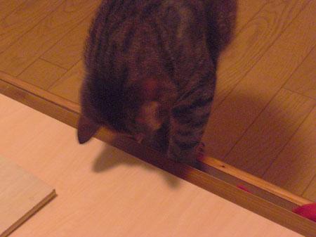 ベッドの下は・・・5