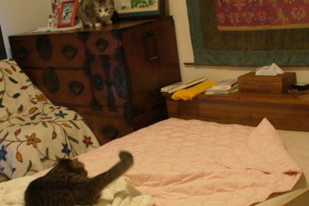 ベッドメークはお遊びタイム3