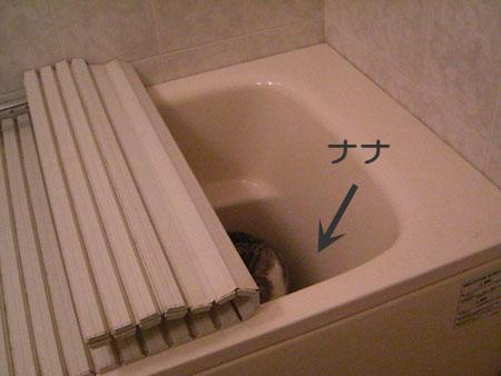 バスルームで1